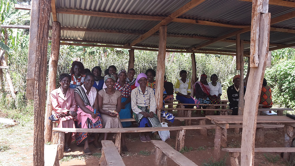 Farmers Women Group